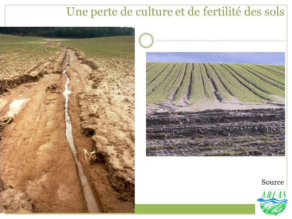 Une perte de culture et de fertilité des sols Source