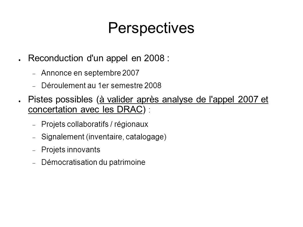 Perspectives Reconduction d'un appel en 2008 : Annonce en septembre 2007 Déroulement au 1er semestre 2008 Pistes possibles (à valider après analyse de