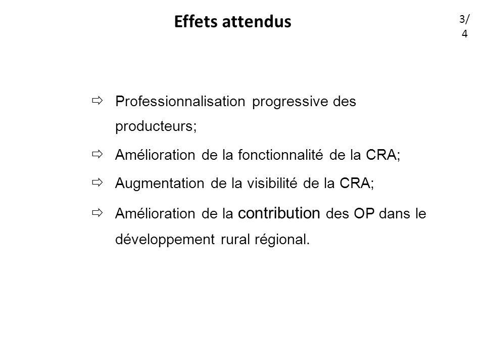 Effets attendus Professionnalisation progressive des producteurs; Amélioration de la fonctionnalité de la CRA; Augmentation de la visibilité de la CRA; Amélioration de la contribution des OP dans le développement rural régional.