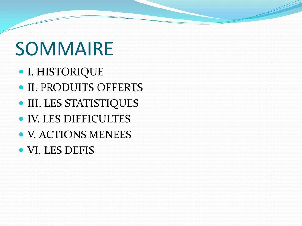 SOMMAIRE I. HISTORIQUE II. PRODUITS OFFERTS III.