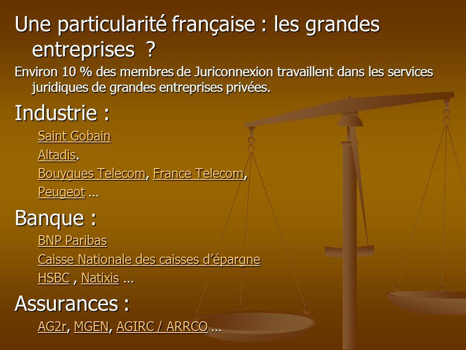 Une particularité française : les grandes entreprises ? Environ 10 % des membres de Juriconnexion travaillent dans les services juridiques de grandes