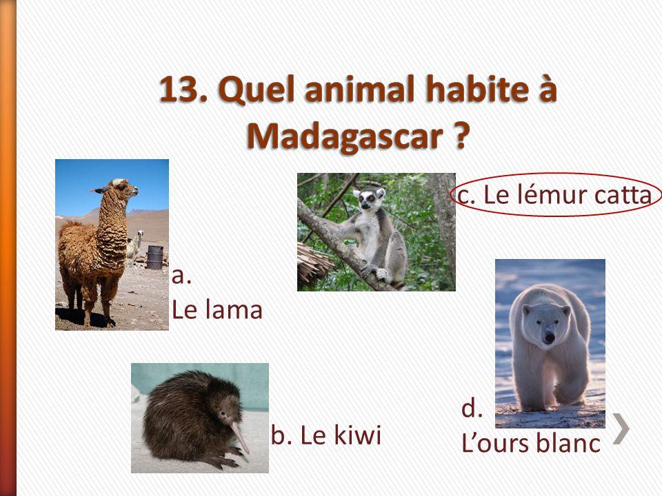 a. Le lama b. Le kiwi c. Le lémur catta d. Lours blanc