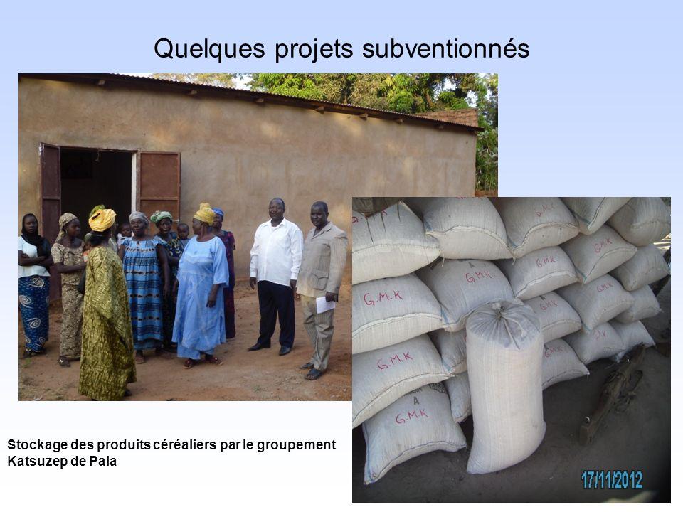 Quelques projets subventionnés Stockage des produits céréaliers par le groupement Katsuzep de Pala