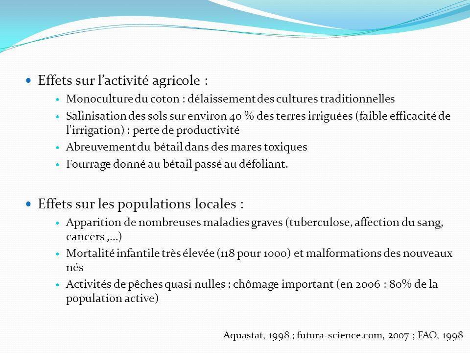 Effets sur lactivité agricole : Monoculture du coton : délaissement des cultures traditionnelles Salinisation des sols sur environ 40 % des terres irr