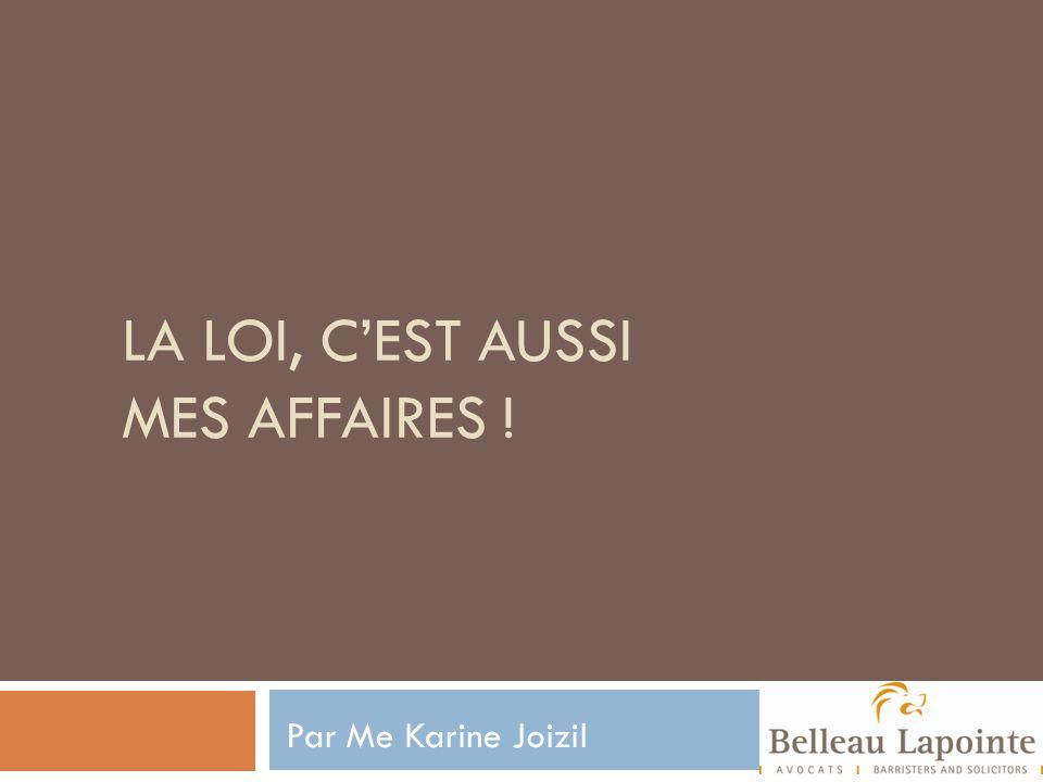LA LOI, CEST AUSSI MES AFFAIRES ! Par Me Karine Joizil