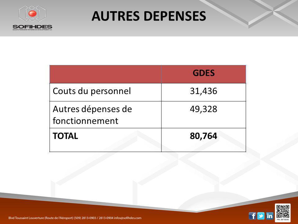 AUTRES DEPENSES GDES Couts du personnel31,436 Autres dépenses de fonctionnement 49,328 TOTAL80,764