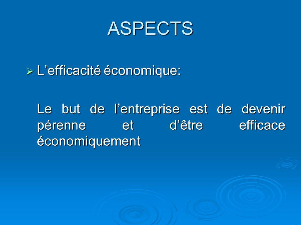 ASPECTS Lefficacité économique: Lefficacité économique: Le but de lentreprise est de devenir pérenne et dêtre efficace économiquement