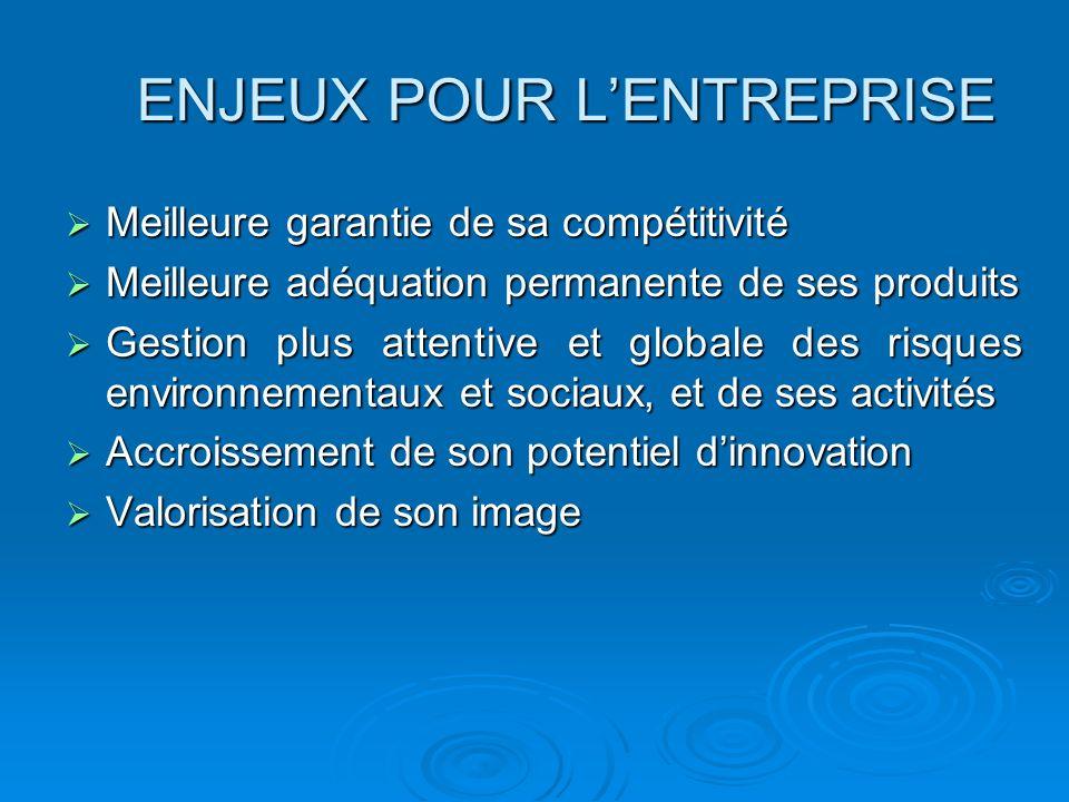 ENJEUX POUR LENTREPRISE Meilleure garantie de sa compétitivité Meilleure garantie de sa compétitivité Meilleure adéquation permanente de ses produits