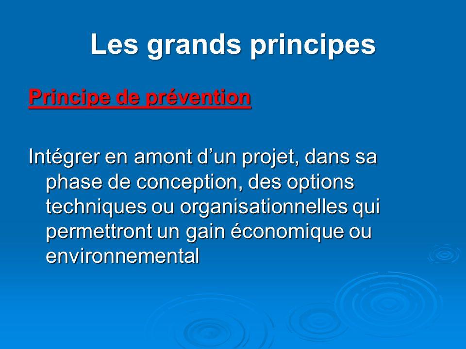 Les grands principes Principe de prévention Intégrer en amont dun projet, dans sa phase de conception, des options techniques ou organisationnelles qu
