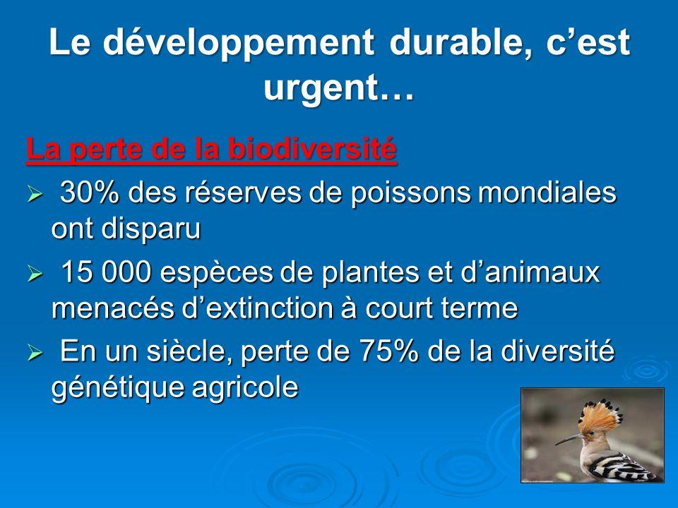 Le développement durable, cest urgent… La perte de la biodiversité 30% des réserves de poissons mondiales ont disparu 30% des réserves de poissons mon