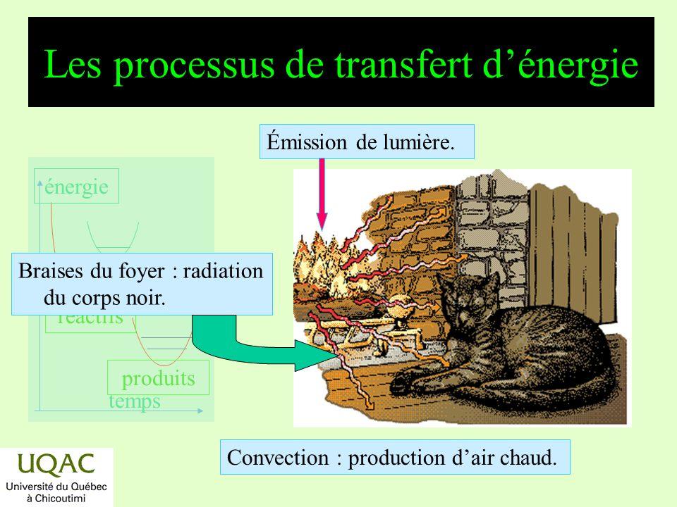 réactifs produits énergie temps Les processus de transfert dénergie Braises du foyer : radiation du corps noir.