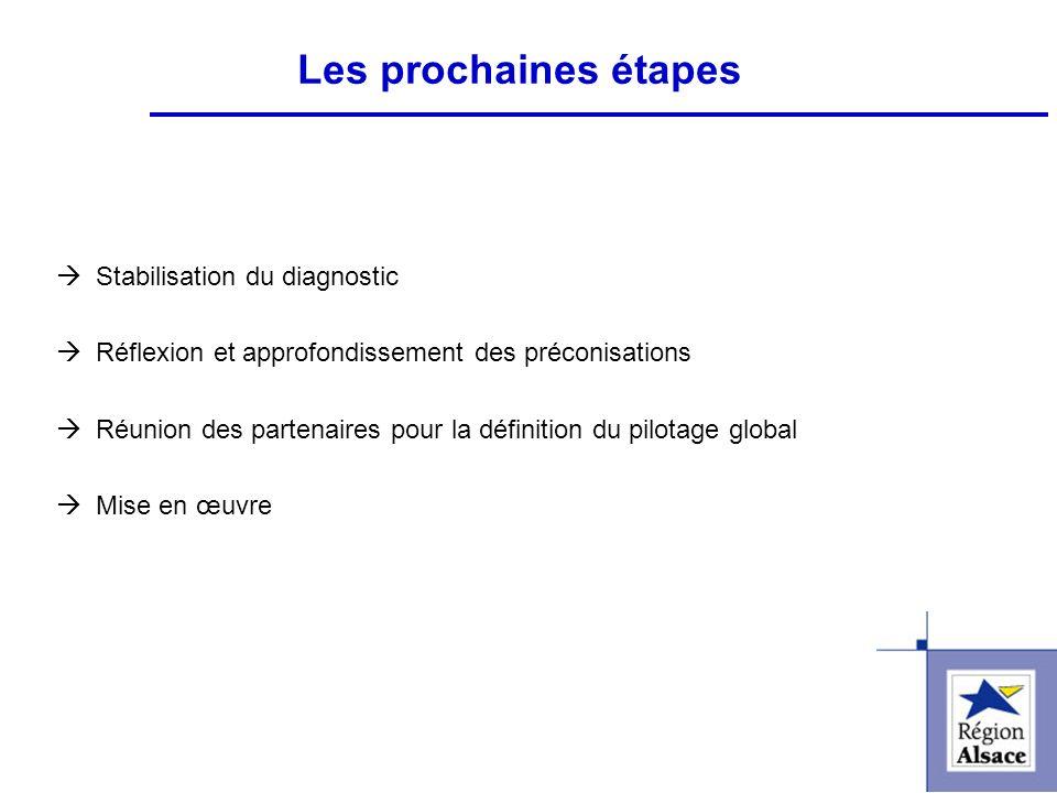 FI&FPCFI&FPC Les prochaines étapes Stabilisation du diagnostic Réflexion et approfondissement des préconisations Réunion des partenaires pour la défin