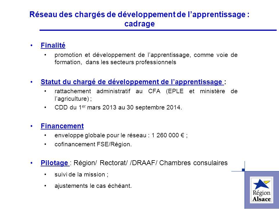 FI&FPCFI&FPC Réseau des chargés de développement de lapprentissage : cadrage Finalité promotion et développement de lapprentissage, comme voie de form