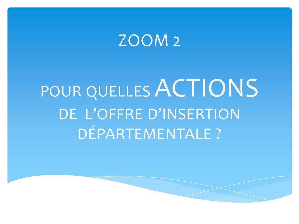 ZOOM 2 POUR QUELLES ACTIONS DE LOFFRE DINSERTION DÉPARTEMENTALE ?