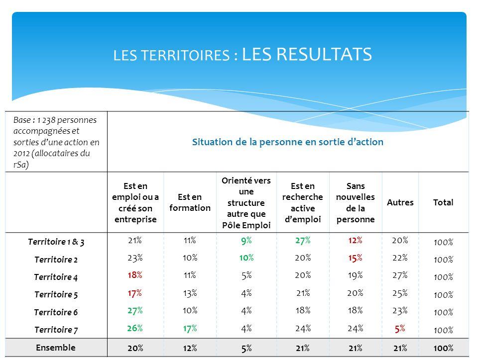 LES TERRITOIRES : LES RESULTATS Base : 1 238 personnes accompagnées et sorties dune action en 2012 (allocataires du rSa) Situation de la personne en s