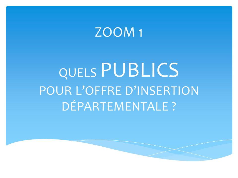 ZOOM 1 QUELS PUBLICS POUR LOFFRE DINSERTION DÉPARTEMENTALE ?