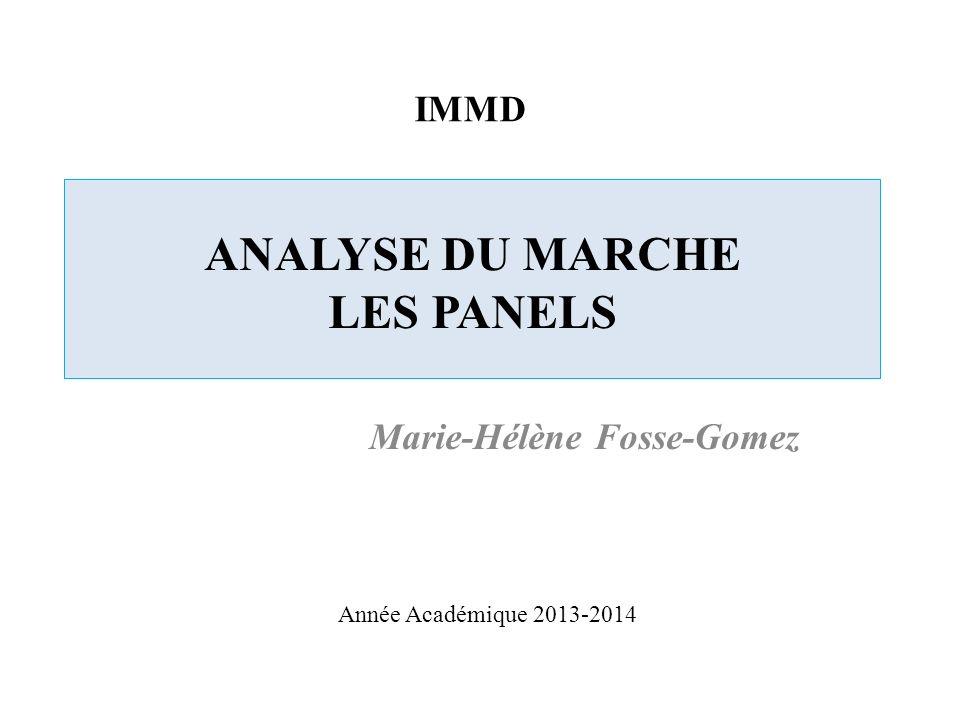 ANALYSE DU MARCHE LES PANELS Marie-Hélène Fosse-Gomez IMMD Année Académique 2013-2014