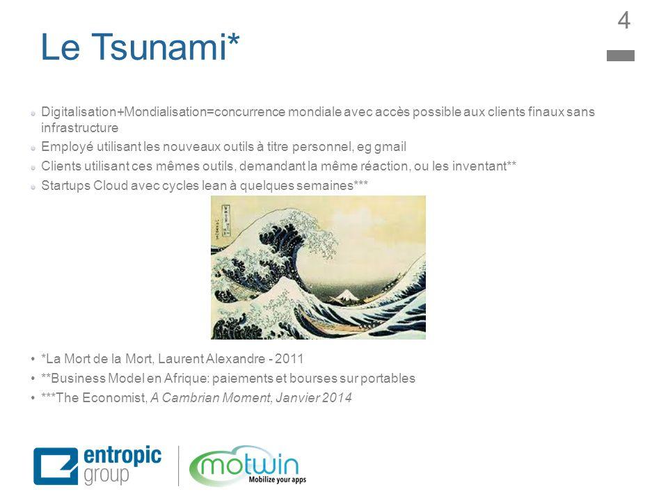 Le Tsunami* Digitalisation+Mondialisation=concurrence mondiale avec accès possible aux clients finaux sans infrastructure Employé utilisant les nouvea