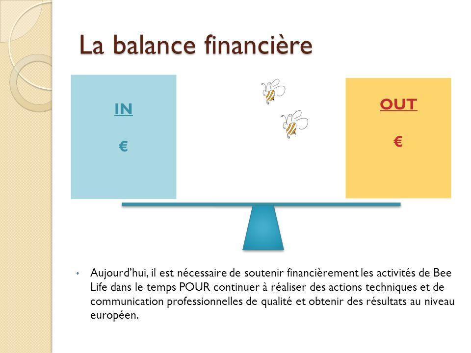 La balance financière OUT Aujourdhui, il est nécessaire de soutenir financièrement les activités de Bee Life dans le temps POUR continuer à réaliser d