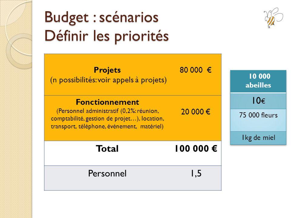 Budget : scénarios Définir les priorités Projets (n possibilités: voir appels à projets) 80 000 Fonctionnement (Personnel administratif (0,2%: réunion, comptabilité, gestion de projet…), location, transport, téléphone, événement, matériel) 20 000 Total100 000 Personnel1,5
