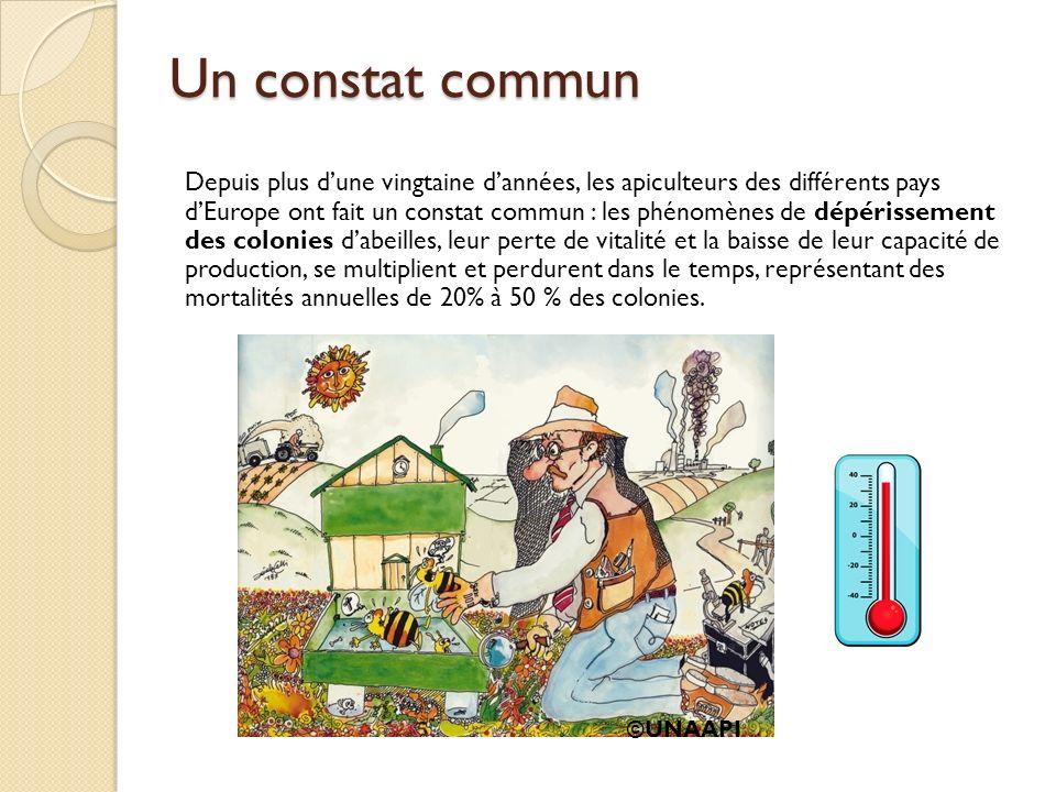Un constat commun Depuis plus dune vingtaine dannées, les apiculteurs des différents pays dEurope ont fait un constat commun : les phénomènes de dépér