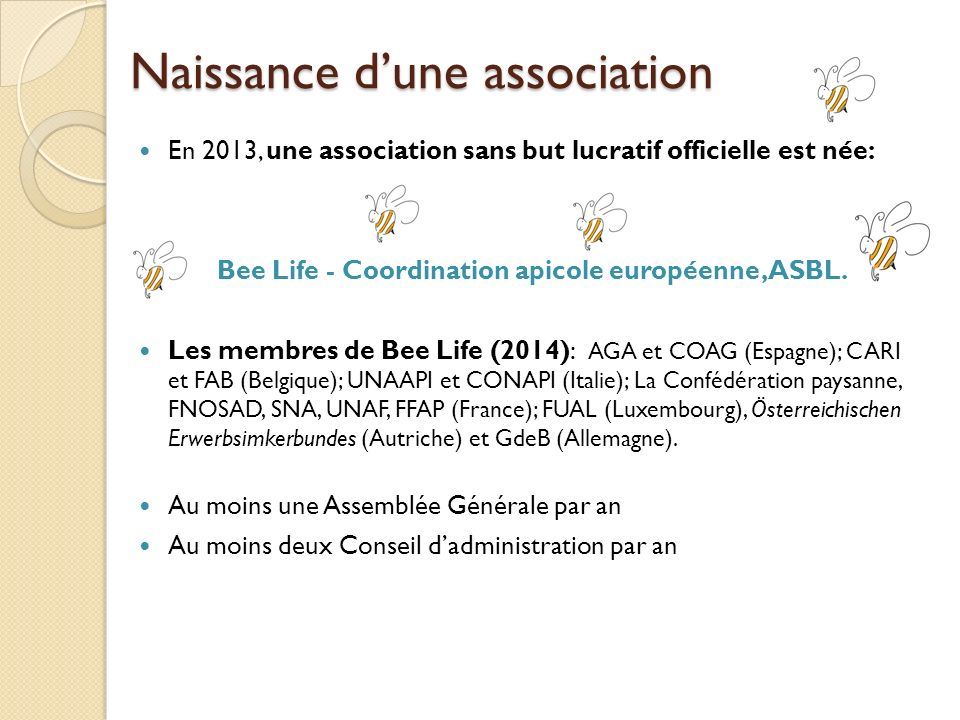 Naissance dune association En 2013, une association sans but lucratif officielle est née: Bee Life - Coordination apicole européenne, ASBL. Les membre