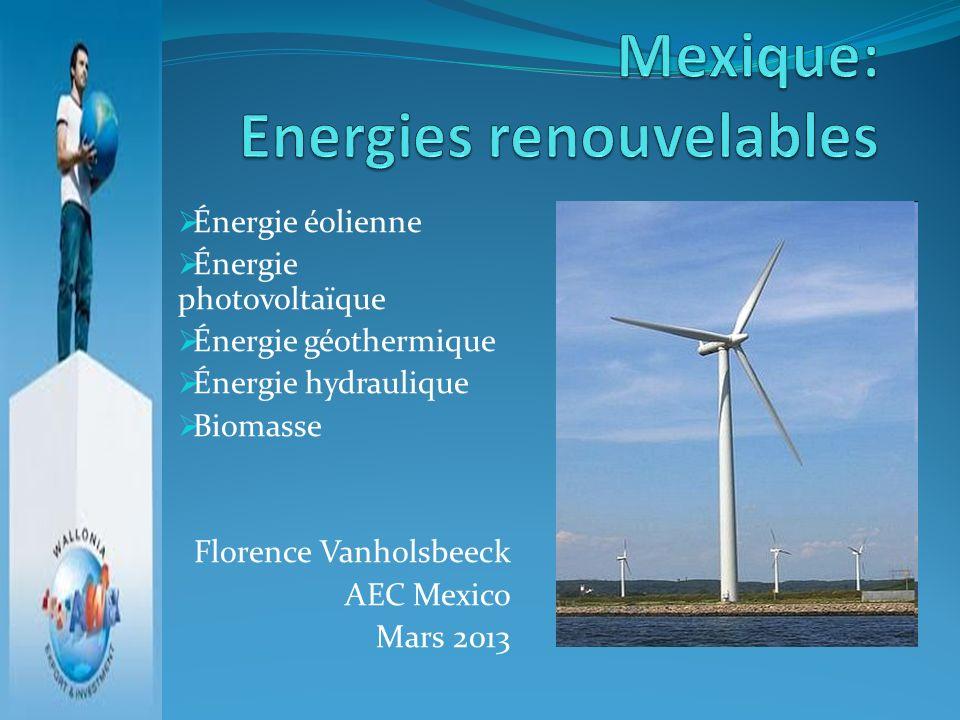 Énergie éolienne Énergie photovoltaïque Énergie géothermique Énergie hydraulique Biomasse Florence Vanholsbeeck AEC Mexico Mars 2013