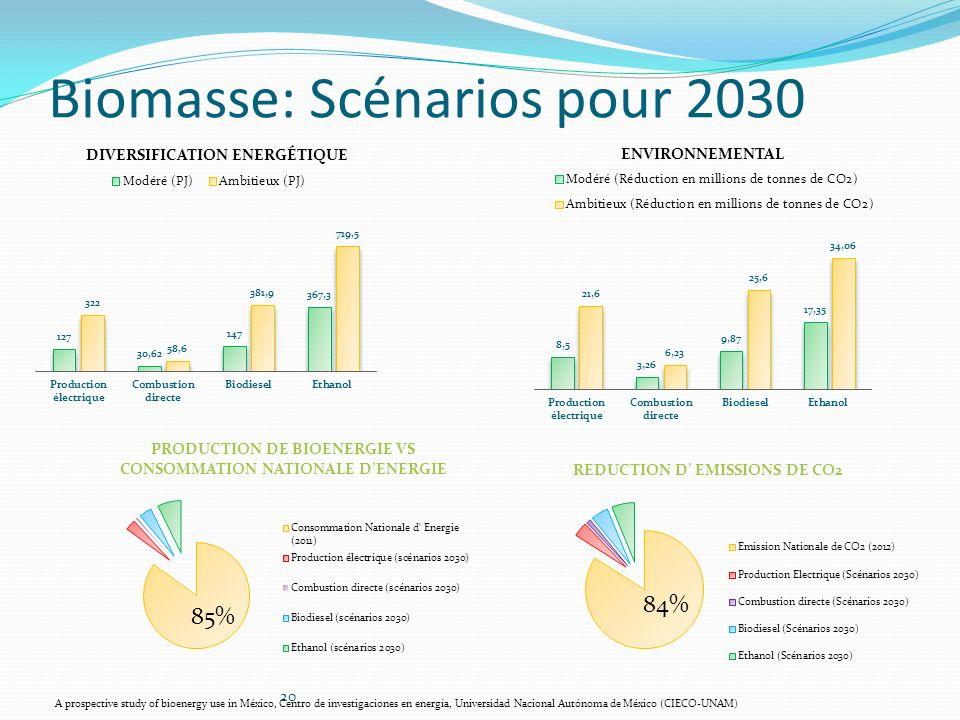 Biomasse: Scénarios pour 2030 20 A prospective study of bioenergy use in México, Centro de investigaciones en energía, Universidad Nacional Autónoma d