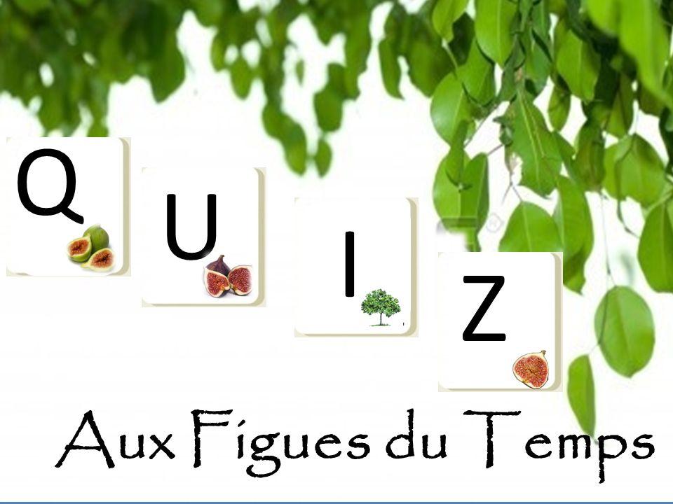 Question 6 : Quel(s) villages français sont réputés pour cultiver les figues .