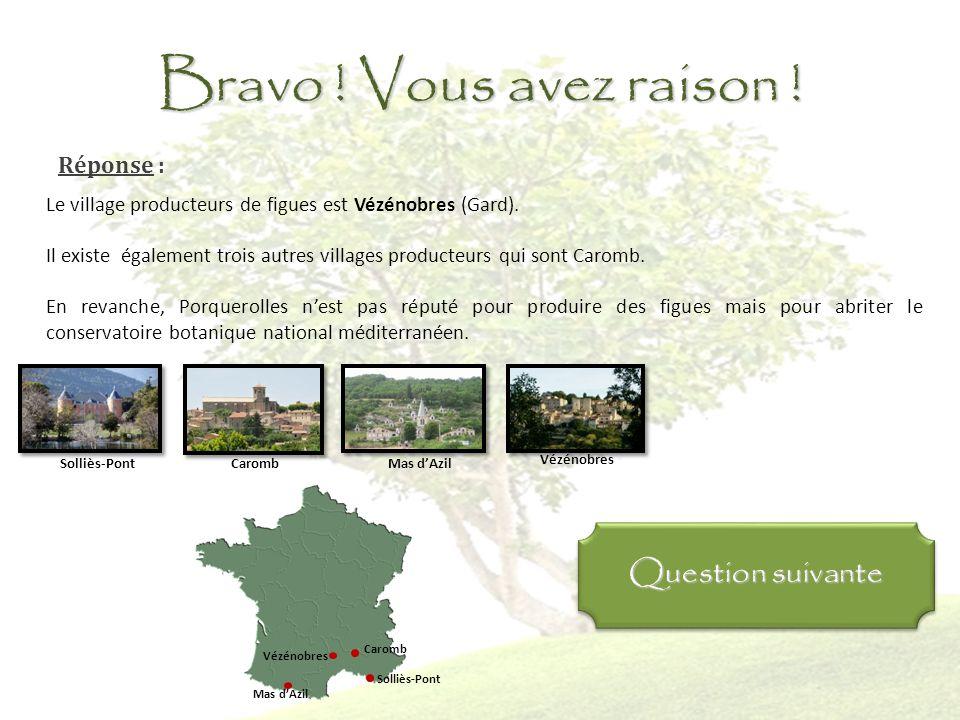 Question 6 : Quel(s) villages français sont réputés pour cultiver les figues ? Porquerolles Vézénobres Les bordes sur Arize