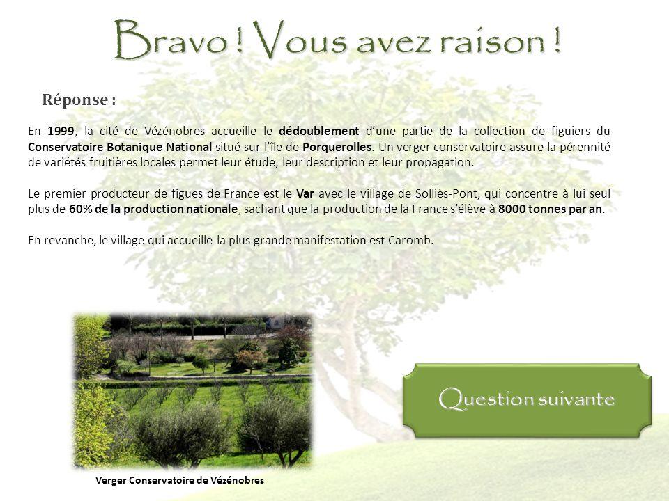 Question 10 : Quelle est la particularité de la cité de Vézénobres ? Elle abrite une partie du Conservatoire botanique de Porquerolles Elle possède la
