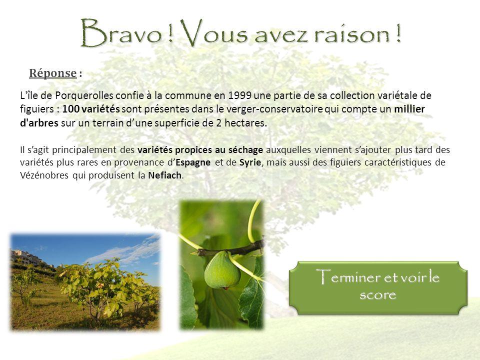 Question 11 : Combien de variétés de figuiers le verger conservatoire abrite t-il ? 50 variétés pour 500 arbres 50 variétés pour 1000 arbres 100 varié