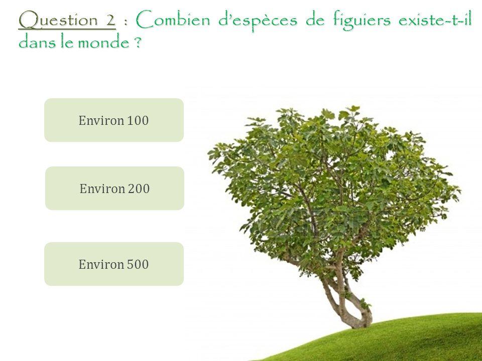 Question 11 : Combien de variétés de figuiers le verger conservatoire abrite t-il .
