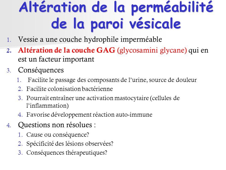 Altération de la perméabilité de la paroi vésicale 1. Vessie a une couche hydrophile imperméable 2. Altération de la couche GAG (glycosamini glycane)