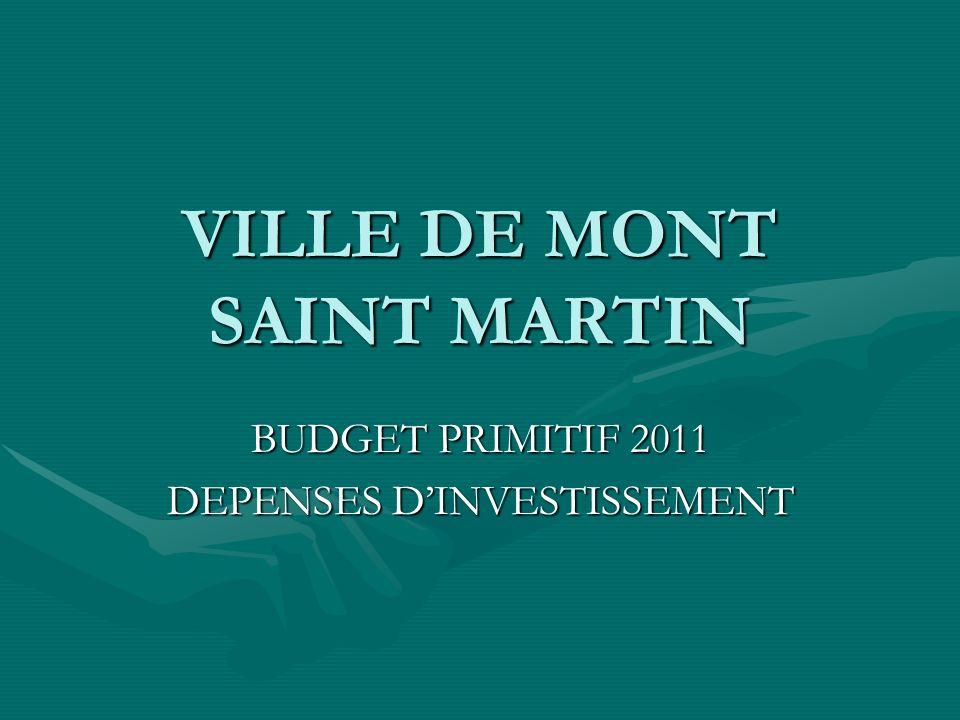 VILLE DE MONT SAINT MARTIN BUDGET PRIMITIF 2011 DEPENSES DINVESTISSEMENT