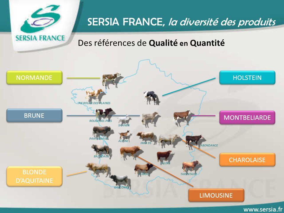 SERSIA FRANCE, la diversité des produits Des références de Qualité en Quantité HOLSTEINNORMANDE CHAROLAISE MONTBELIARDELIMOUSINE BLONDE DAQUITAINE BRU