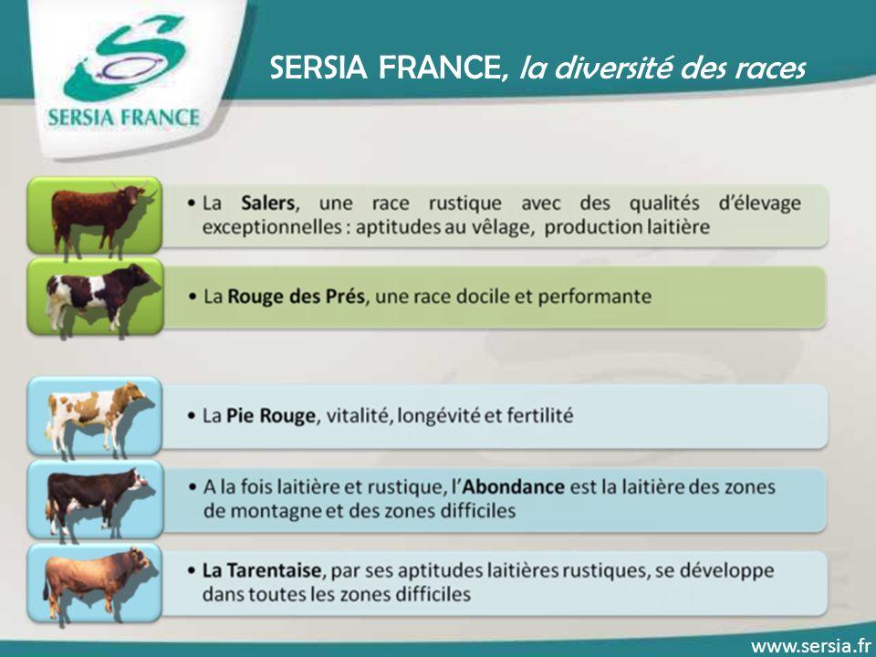 SERSIA FRANCE, la diversité des races www.sersia.fr