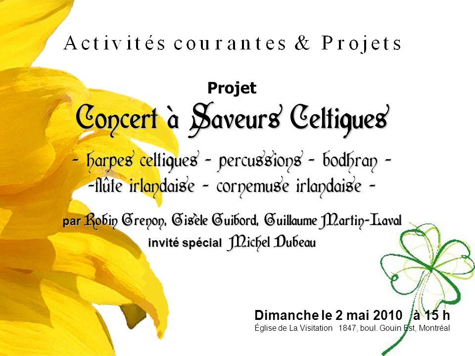 Projet Concert à Saveurs Celtiques - harpes celtiques - percussions - bodhran - - flûte irlandaise - cornemuse irlandaise - par Robin Grenon, Gisèle G