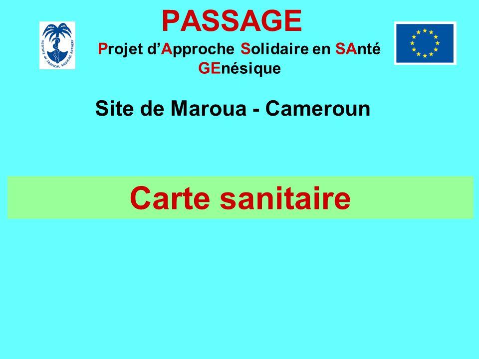 PASSAGE Projet dApproche Solidaire en SAnté GEnésique Site de Maroua - Cameroun Carte sanitaire
