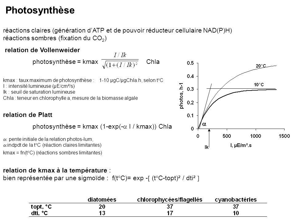 réactions claires (génération dATP et de pouvoir réducteur cellulaire NAD(P)H) réactions sombres (fixation du CO 2 ) relation de Vollenweider photosyn