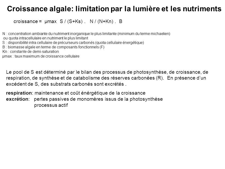 Croissance algale: limitation par la lumière et les nutriments croissance = µmax S / (S+Ks). N / (N+Kn). B N : concentration ambiante du nutriment ino