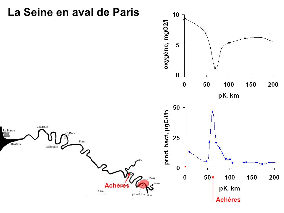 La Seine en aval de Paris Achères