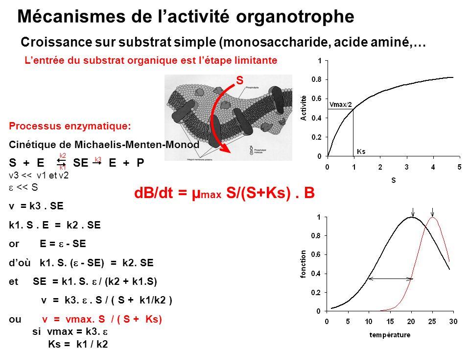 Mécanismes de lactivité organotrophe Croissance sur substrat simple (monosaccharide, acide aminé,… Lentrée du substrat organique est létape limitante
