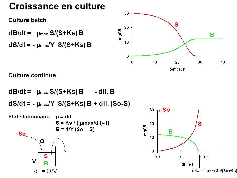 dB/dt = µ max S/(S+Ks) B dS/dt = - µ max /Y S/(S+Ks) B Croissance en culture Culture batch B S Etat stationnaire: µ = dil S = Ks / ((µmax/dil)-1) B =