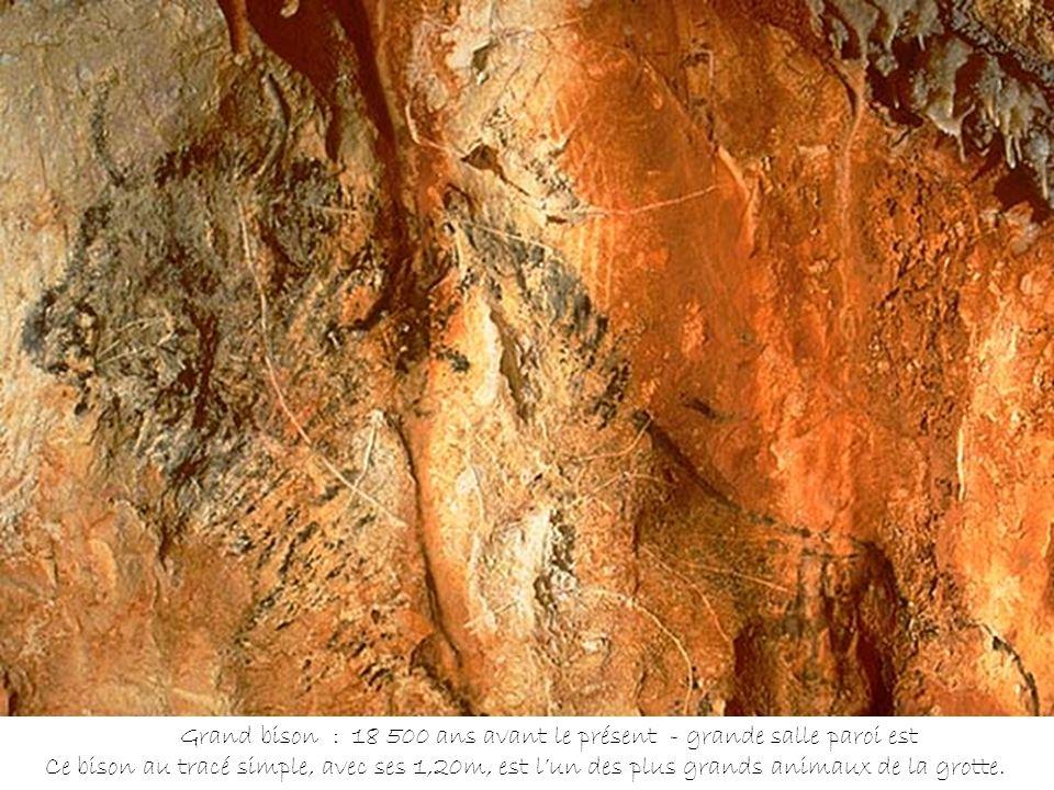 Cerf peint au charbon de bois et partiellement recouvert de calcite