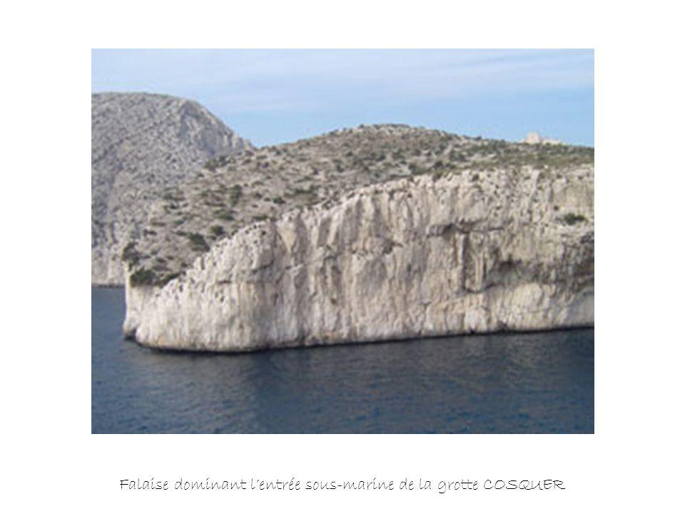 Falaise dominant lentrée sous-marine de la grotte COSQUER