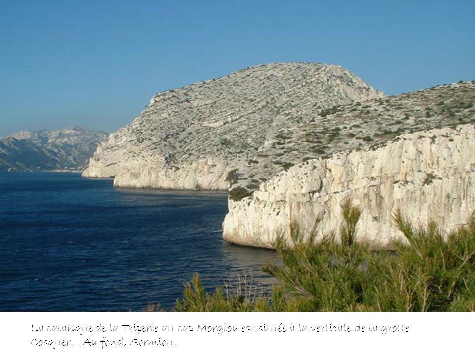 Sur la faille est, petit bouquetin gravé associé à de nombreux raclages 18 500 ans après le présent