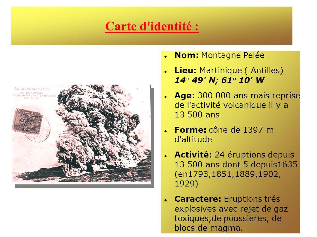 Carte d'identité : Nom: Montagne Pelée Lieu: Martinique ( Antilles) 14° 49' N; 61° 10' W Age: 300 000 ans mais reprise de l'activité volcanique il y a