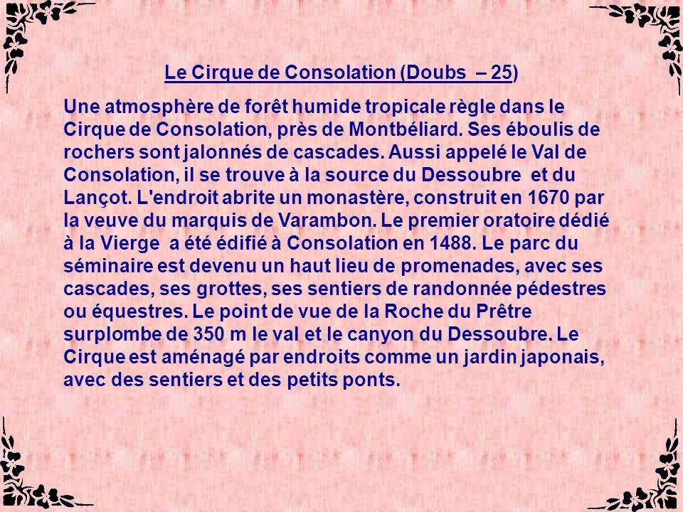 Le Cirque de Consolation (Doubs – 25) Une atmosphère de forêt humide tropicale règle dans le Cirque de Consolation, près de Montbéliard.