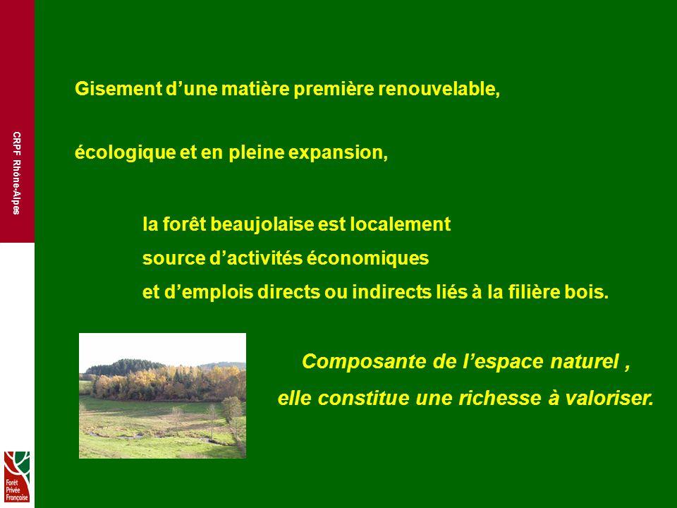 CRPF Rhône-Alpes Gisement dune matière première renouvelable, écologique et en pleine expansion, la forêt beaujolaise est localement source dactivités économiques et demplois directs ou indirects liés à la filière bois.